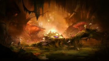 Ori and the Will of the Wisps Nintendo Switch