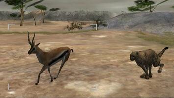 Wild Earth: African Safari Wii