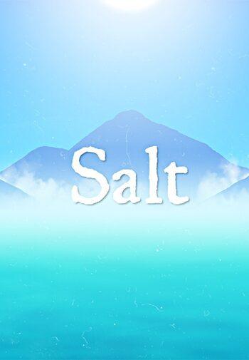 Salt Steam Key GLOBAL