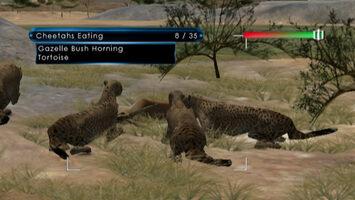 Wild Earth: African Safari Wii for sale