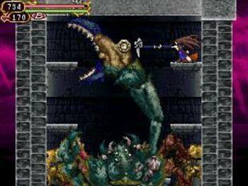 Castlevania: Order of Ecclesia Nintendo DS for sale